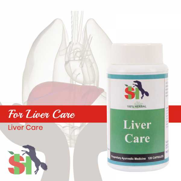 Buy LIVER CARE Online in Algeria
